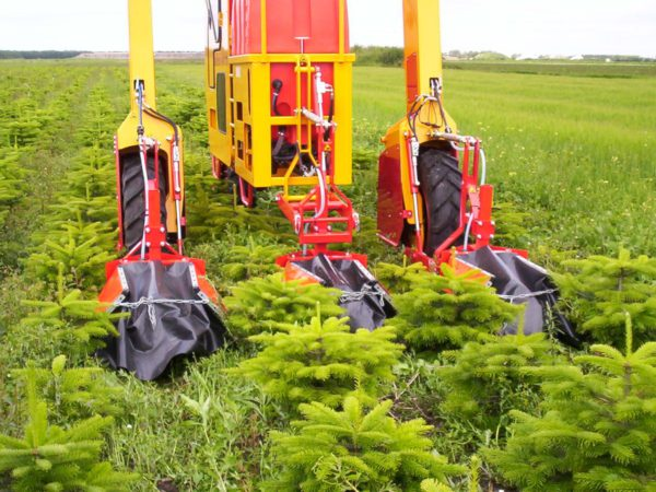 Christmas Tree Sprayer.Sprayers High Clearance Tractors Damcon Holland High